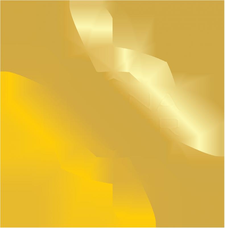 MagnaPower Logo